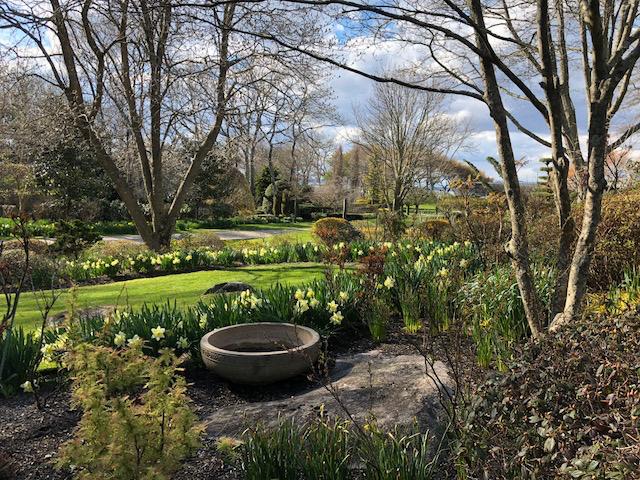 How To Incorporate Garden Compost Into Garden